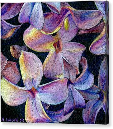 Lilac 1 Canvas Print by Audi Swope