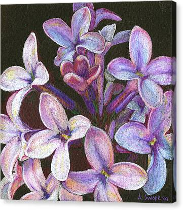Lilac 2 Canvas Print by Audi Swope