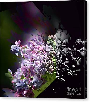 Lilac 2 Canvas Print by Elaine Hunter