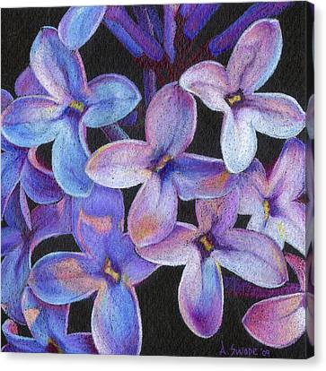 Lilac 3 Canvas Print by Audi Swope