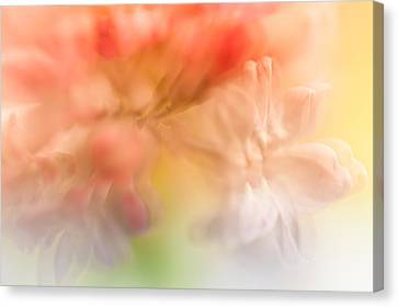 Lilac Floral Abstract 1. Watercolors Series Canvas Print by Jenny Rainbow