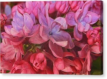 Lilac Blush Canvas Print