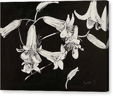 Lilies Black And White Canvas Print