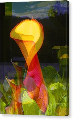 Lilies Canvas Print by Eileen Shahbazian