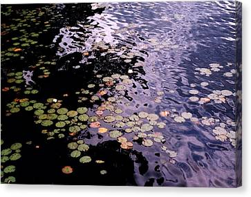 Canvas Print featuring the photograph Lilies In The Water by Lyle Crump