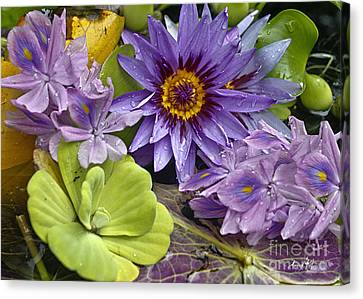 Lilies No. 38 Canvas Print by Anne Klar