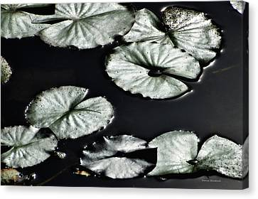 Lilies Of The Deep Canvas Print