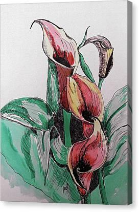 Lillie Canvas Print