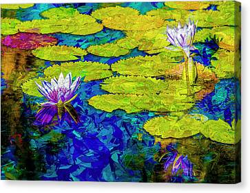 Lilly Canvas Print by Paul Wear
