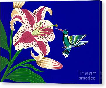 Lily And Hummingbird Canvas Print by Lucyna A M Green