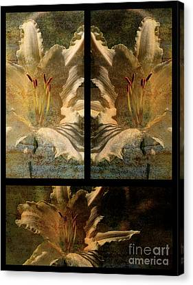 Lily Collage Canvas Print by Lois Bryan