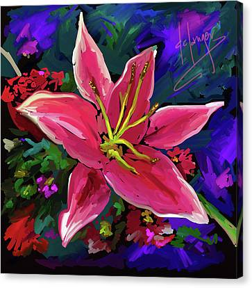 Lily Canvas Print by DC Langer