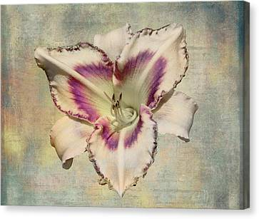 Lily For A Day Canvas Print by Angela A Stanton