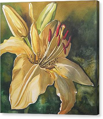 Lily In Yellow Canvas Print by Alfred Ng