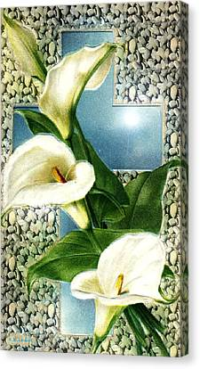 Lily Canvas Print by Kenneth Lambert