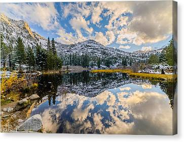 Lily Lake Canvas Print by Mike Ronnebeck