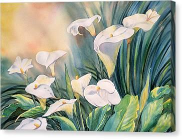 Lily Light Canvas Print by Tara Moorman