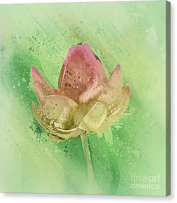 Canvas Print featuring the mixed media Lily My Lovely - S112sqc88 by Variance Collections