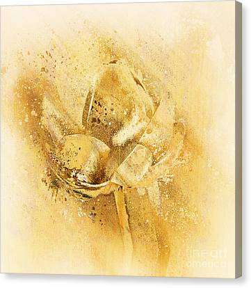Canvas Print featuring the digital art Lily My Lovely - S114sqc75v2 by Variance Collections