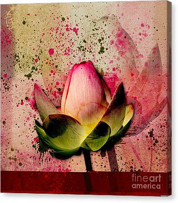 Lily My Lovely - S23asq Canvas Print