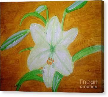 Lily Of Ecuador Canvas Print