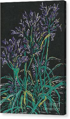 Canvas Print featuring the mixed media Lily Of The Nile  by Vicki  Housel