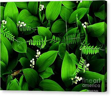 Lily Of The Valley Canvas Print by Elfriede Fulda