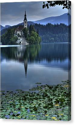 Lily Pads At Lake Bled Canvas Print