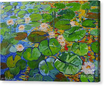 Lily Pond Reflections Canvas Print by Ana Maria Edulescu