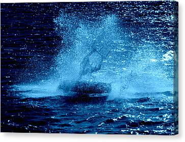Lily Winds The Kiteboarder Spirit Canvas Print by Lily Winds