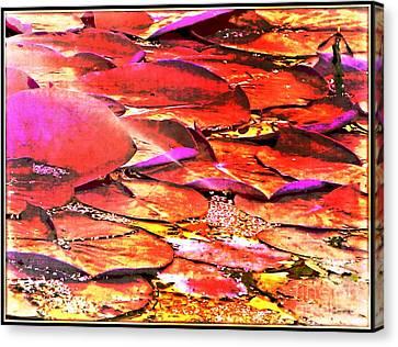 Crimson Lilypads Floating.. Canvas Print by Jolanta Anna Karolska