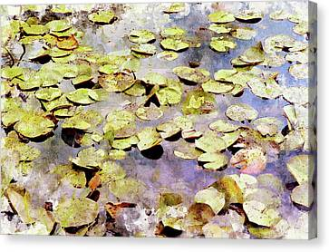 Lilypads W C Canvas Print by Peter J Sucy