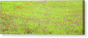 Canvas Print featuring the digital art Lime And Hot Pink Field by Ellen Barron O'Reilly