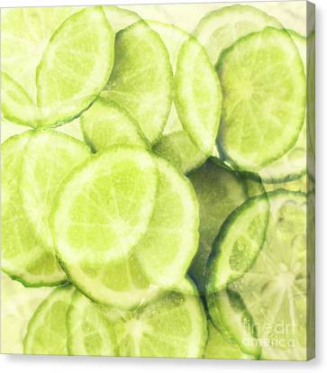 Lime Slices Canvas Print