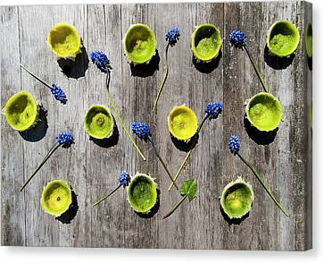 Limes Were Delicious Canvas Print by Nat Air Craft