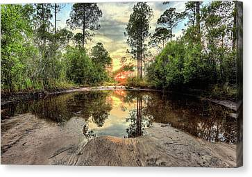 Limited Access  Canvas Print by JC Findley