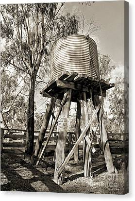 Canvas Print featuring the photograph Limited Water Supply by Linda Lees