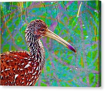 Canvas Print featuring the digital art Limpkin II by David Mckinney