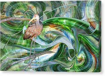 Limpkin Studying Time Flow Canvas Print