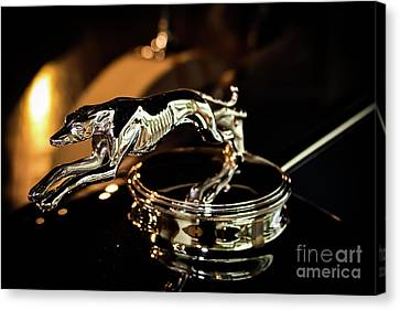 Lincoln Greyhound Hood Ornament Canvas Print