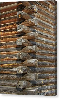 Lincoln Logs Canvas Print by Skip Willits