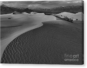 Line To Infinity Canvas Print by Adam Jewell