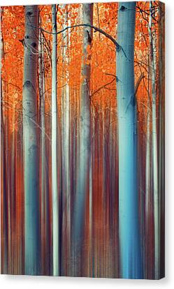Lines Of Autumn Canvas Print