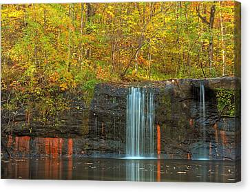 Lines Of Nature Canvas Print by RC Pics