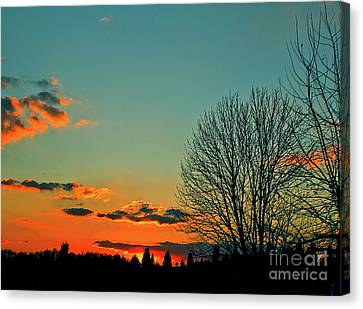 Canvas Print featuring the photograph Linvilla Sunset by Sandy Moulder