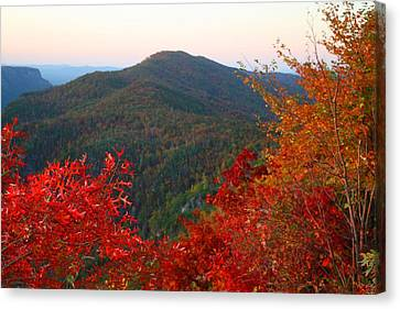 Canvas Print featuring the photograph Linville Gorge by Kathryn Meyer