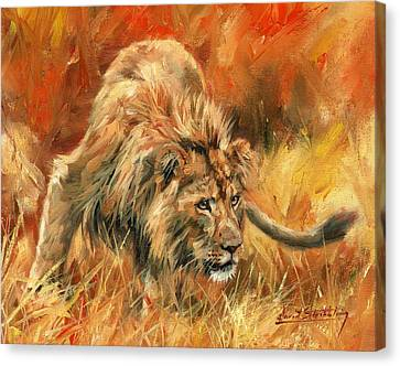 Canvas Print featuring the painting Lion Alert by David Stribbling