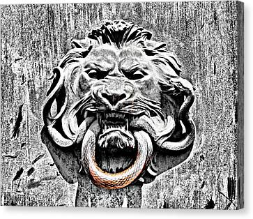 Lion And The Snake Canvas Print by Greg Sharpe