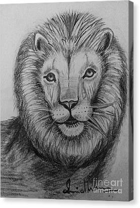 Lion Canvas Print by Brindha Naveen