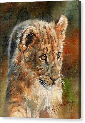 Canvas Print featuring the painting Lion Cub Portrait by David Stribbling